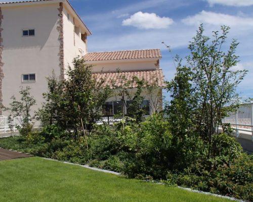 ⑧芝生、植栽個所全て 自動灌水装置を設置しています。