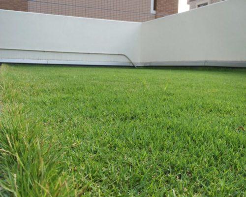 ③芝生のジュータン(TM-9)を張りました。