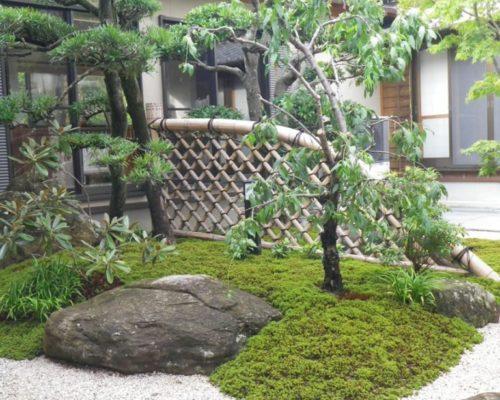 ⑥中庭の1つの景色となった光悦寺垣。