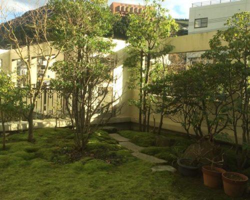 ①屋上でも自動灌水装置で、苔もふかふかです。