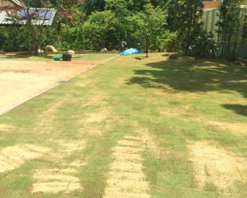 ㉔主庭部分は芝張り仕上げ。(TM-9)