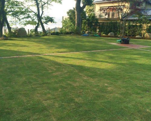 ㉖広々とした芝生(TM-9)の空間。クスノキの木陰が涼しそうです。