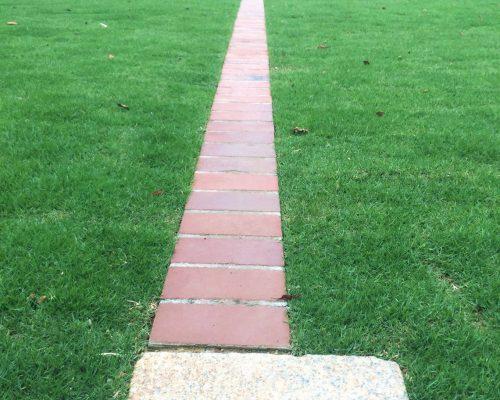 ㉚芝生の中のレンガの直線が美しい。