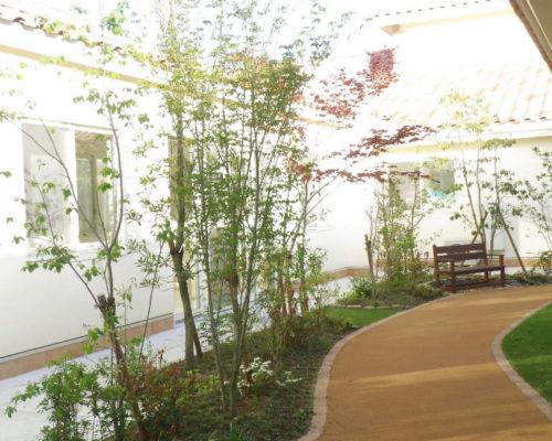④下草と赤や緑の葉。香りのある樹木を植え四季を感じられる空間が出来ました。