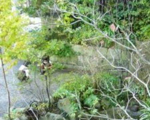 ①多種の植物を植栽して四季を感じる庭へしました。
