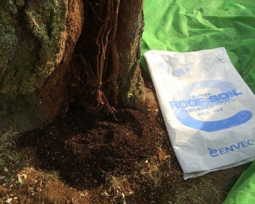 ⑥土壌改良資材投入ルーフソイル5号