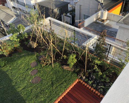 屋上緑化完成
